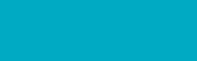 Tailgunner Logo